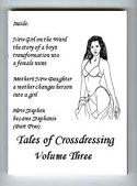 Tales of Crossdressing Vol 3